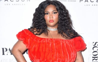 The Stunning Transformation of Lizzo   Traitslab